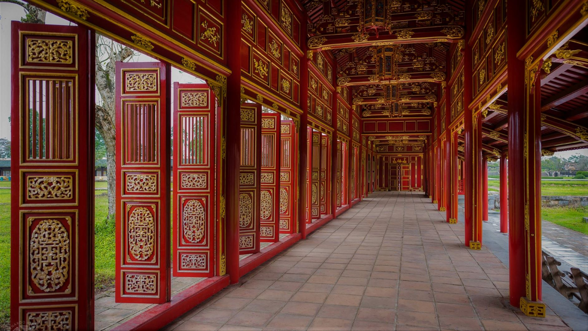 Vietnam Dinámico